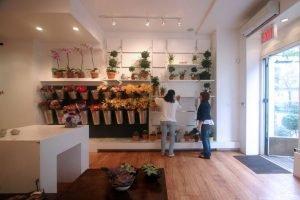 Beautiful Flower Shop Design Ideas Gallery - Home Design Ideas ...