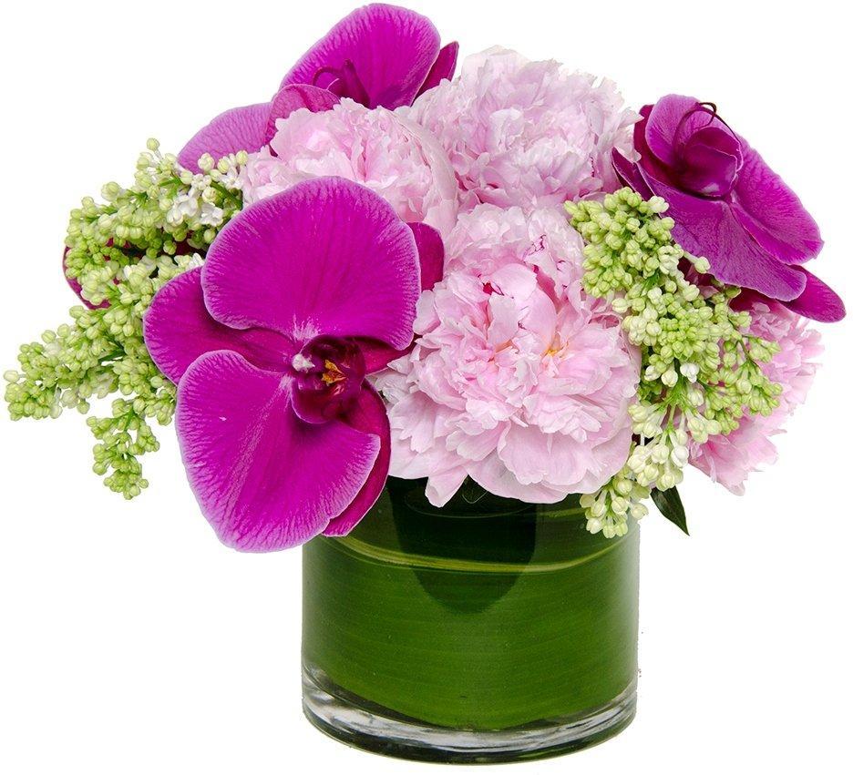 Best Flower Delivery App Same Day Flower Delivery
