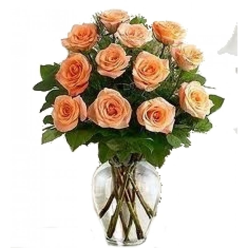 Uncommon article gives you the facts on flower delivery colorado uncommon article gives you the facts on flower delivery colorado springs that only a few people know exist mightylinksfo