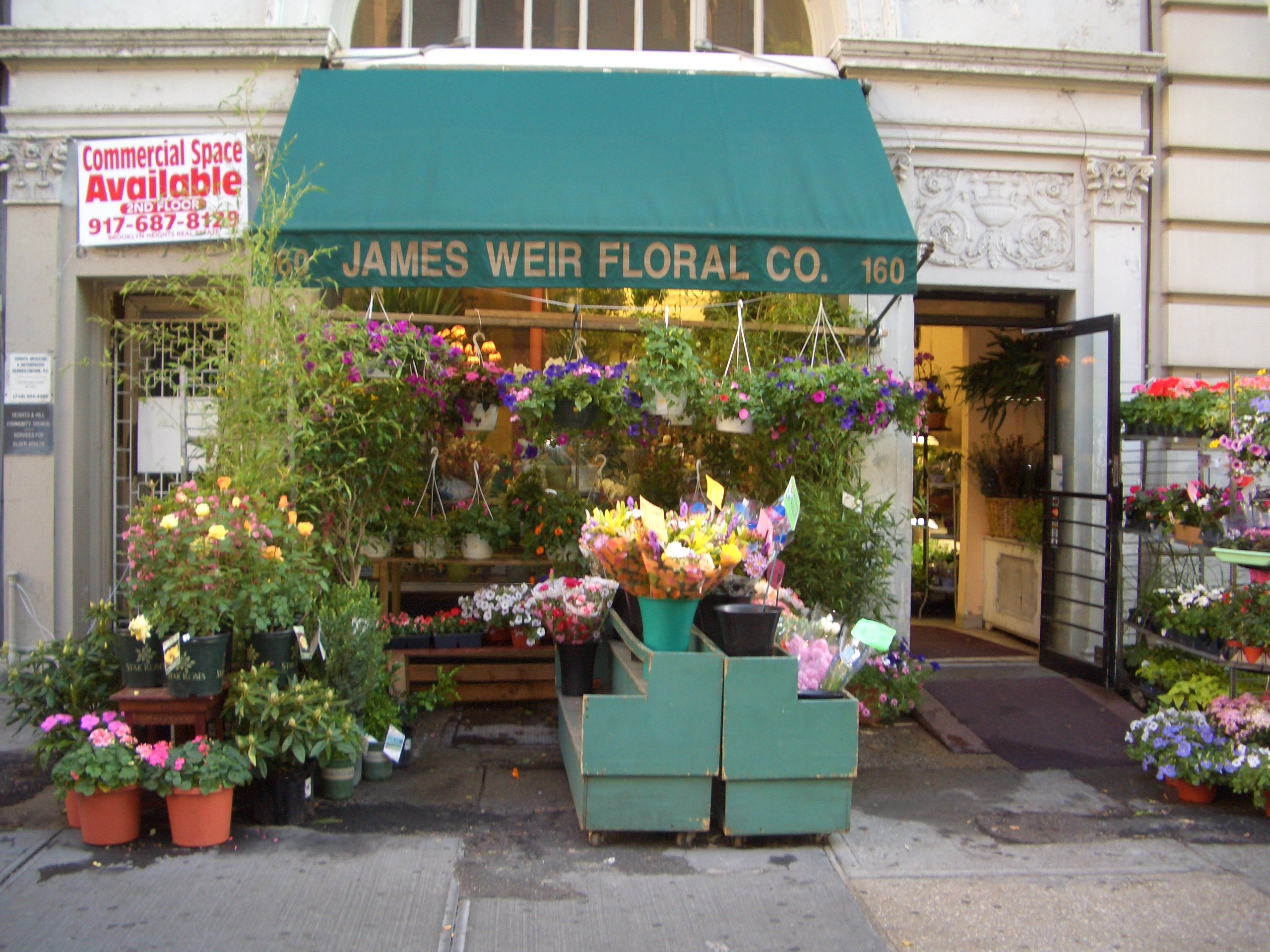 Flower shops in manhattan ny same day flower delivery blossom flower shop is your local and trusted florist with fresh flower shops in white plains yonkers new york we offer same day flower plant and gift mightylinksfo