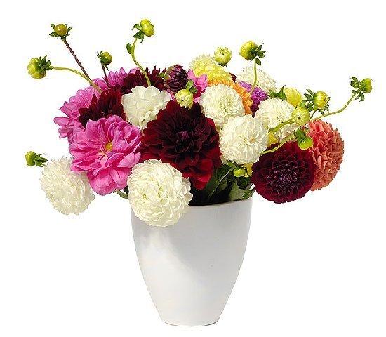 Как сделать великолепный букет из сухих цветов