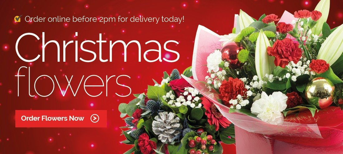 Send Flowers Houston Same Day Delivery Same Day Flower