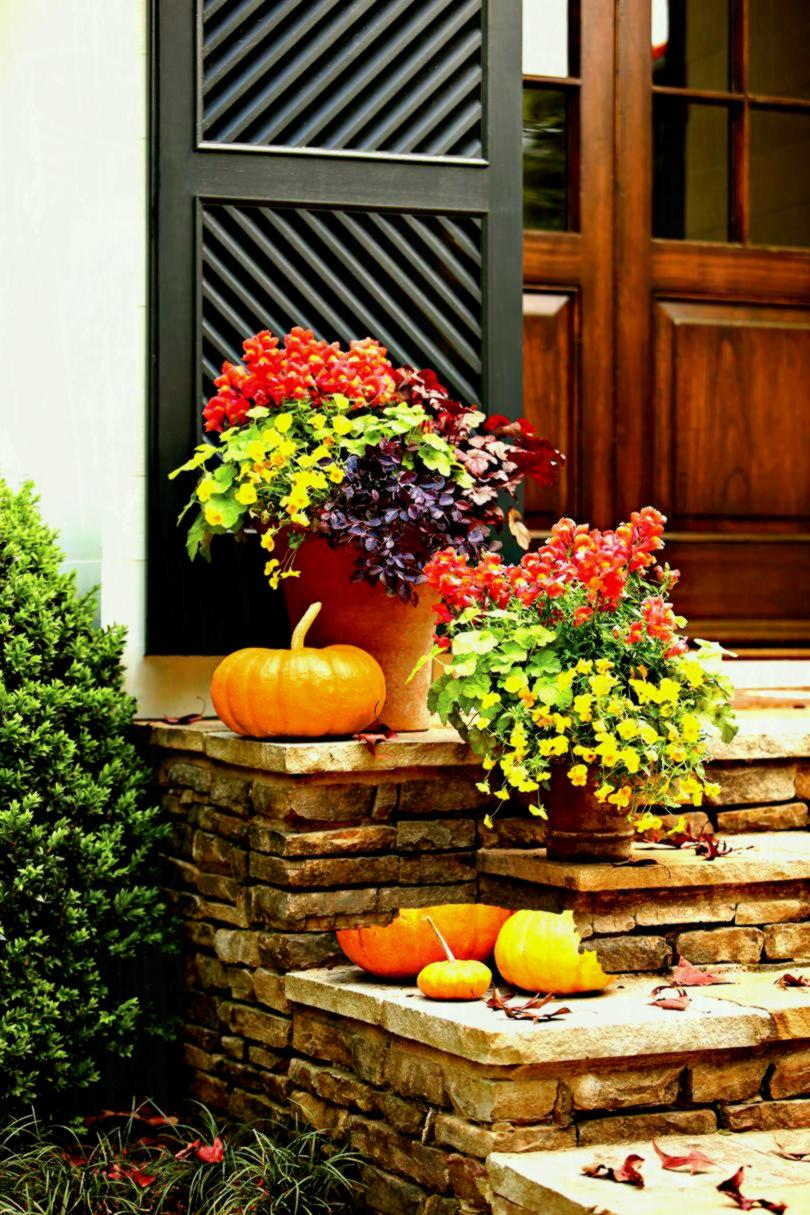 Best spring flowers for pots decoration brick planter box ideas best spring flowers for pots decoration brick planter box ideas flower images best fall flowers to plant in pots plants for outdoor containers creative mightylinksfo