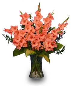 August birth month flowers and their meanings, gladiolus, poppy from The Old Farmer's Almanac. Welcome to The Birth Flower Guide. A birth flower is a flower ...