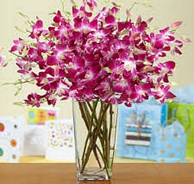 By Photoromanticlove Wp Content Uploads 2017 01 Birthday Flower Images Free Download To Surprise