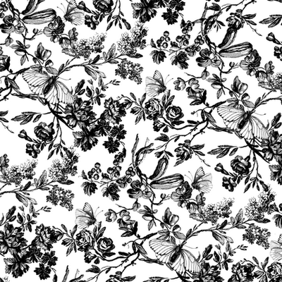 Black and white flower poster same day flower delivery by httpimgclpostersimagesimagesp 473 488 90303002r9dbf00zposters black and white print with large white flowerg mightylinksfo