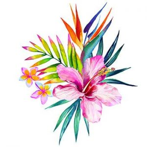 Hawaiian Flower Drawing Same Day Flower Delivery