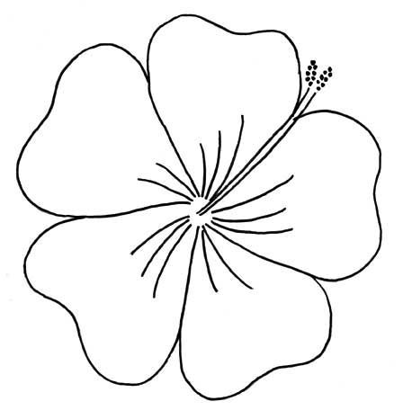 Elegant Pictures to Draw Of Flowers