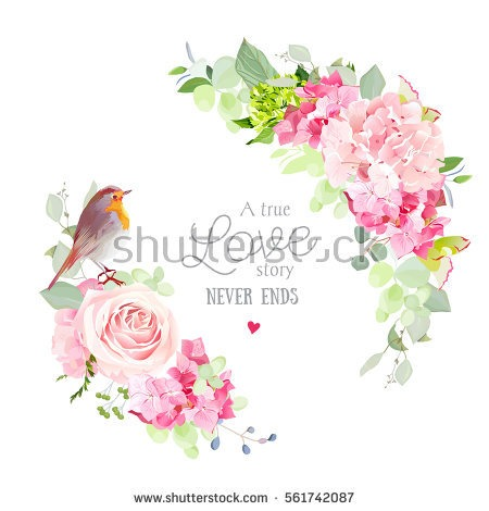 Paper carnation flowers same day flower delivery by httpsthumb10utterstockdisplaypicwithlogo1883024561742087stock vector floral vector round frame with pink rose hydrangea carnation mightylinksfo