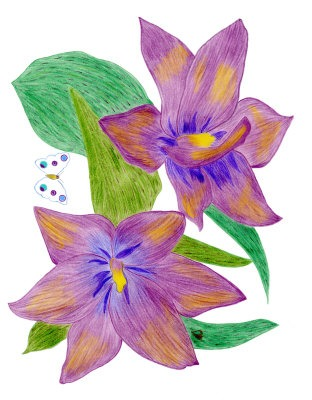 Spring Flowers Drawing Same Day Flower Delivery