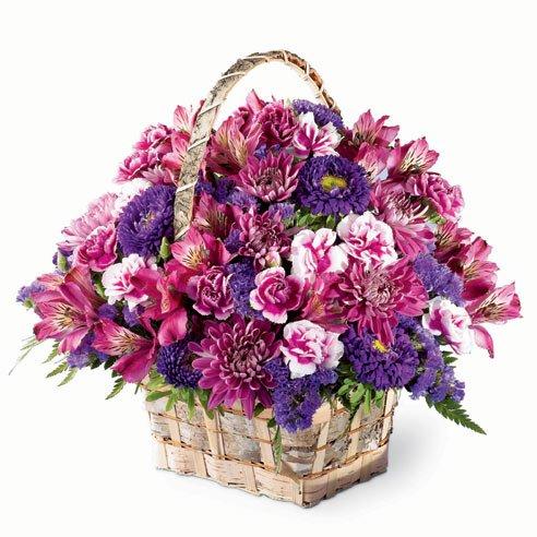 purple flowers purple flower arrangements amp bouquets - 492×492