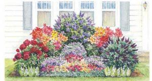 Perennial Flower Garden Plans Same Day Flower Delivery