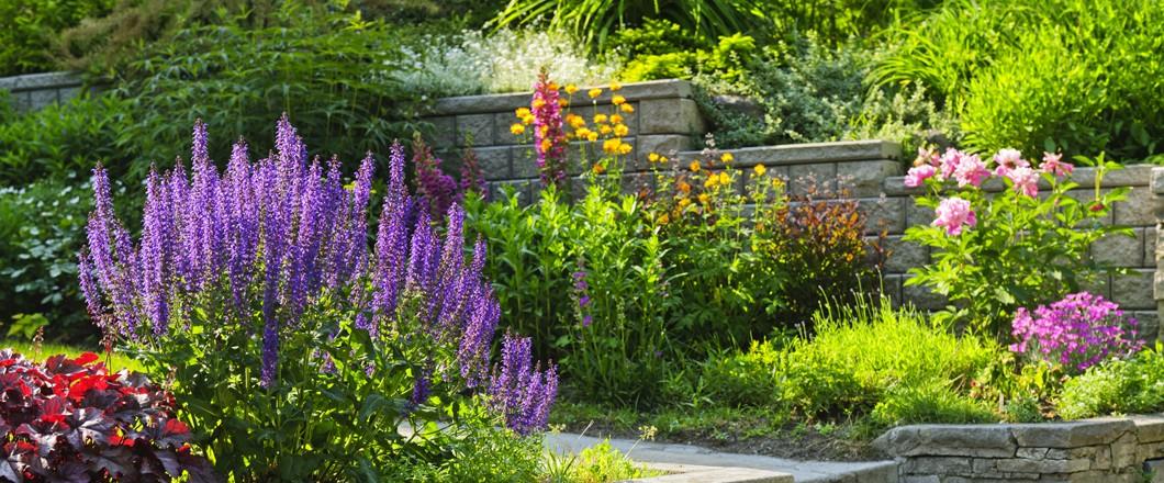 Flower Garden Denton Tx
