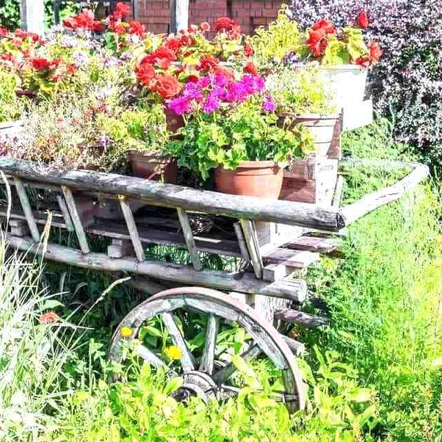 Garden Flower Cart
