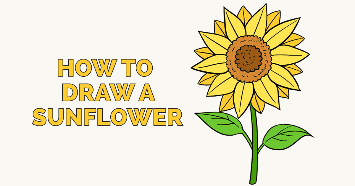 Sunflowers Drawing Easy
