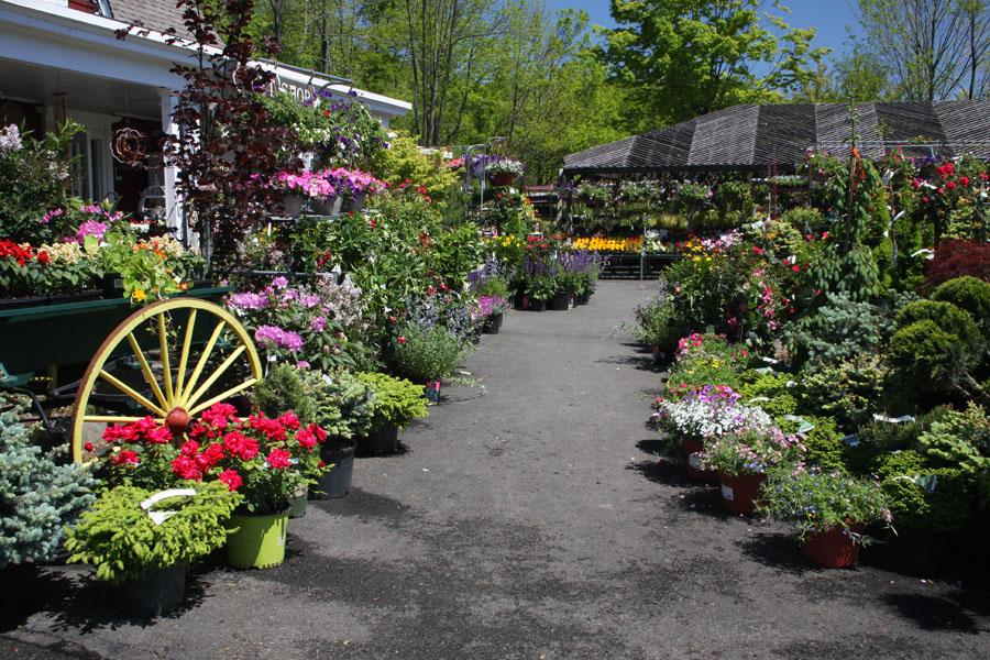 Nursery And Garden Center