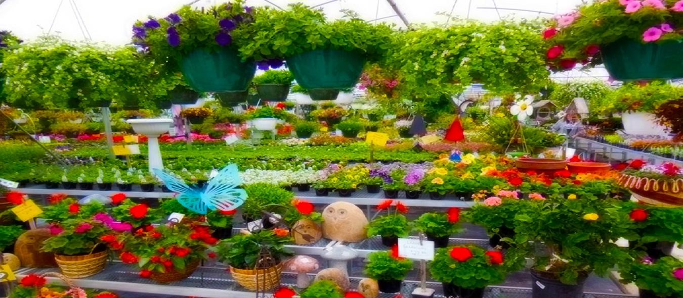 Childrens Nursery Garden Ideas