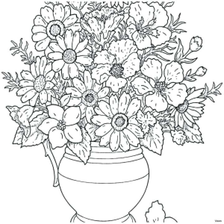 Flowers sketch images (Studens.info)