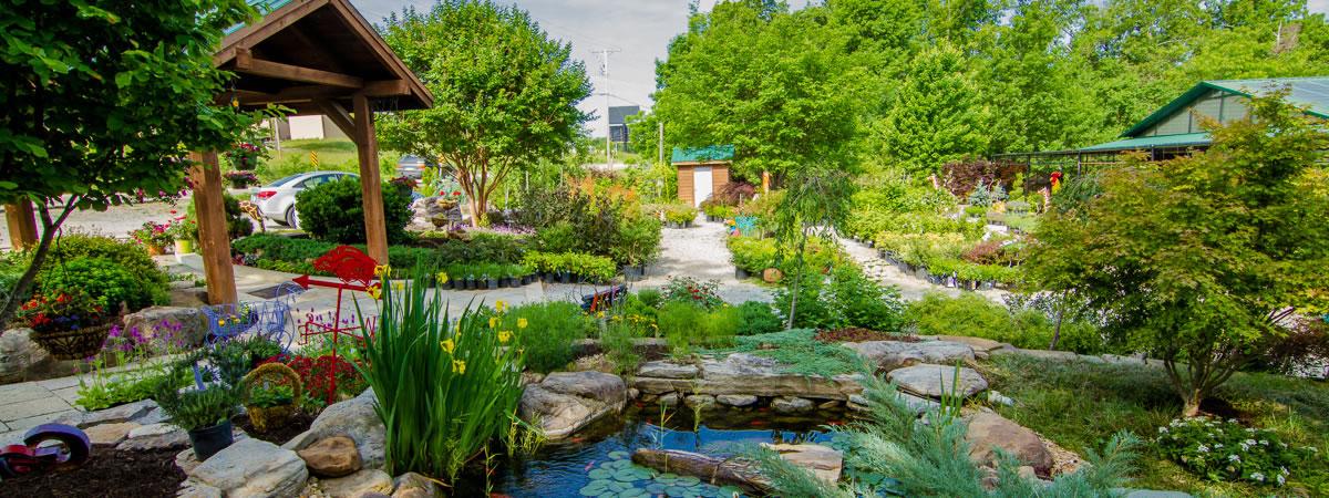 Home Garden Nursery