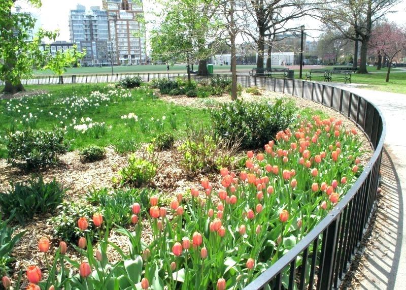 Garden Nursery Brooklyn
