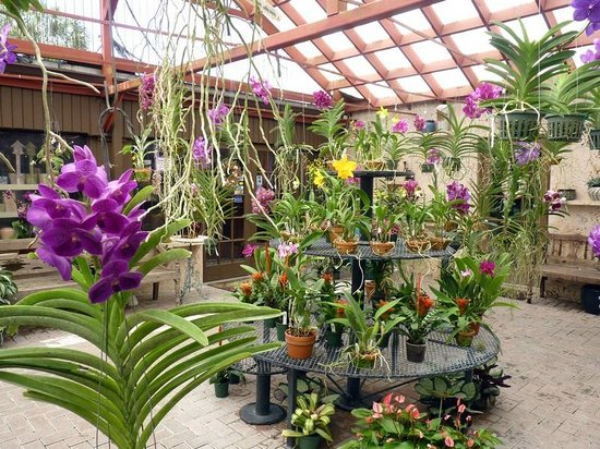 Garden Nursery Homestead Fl