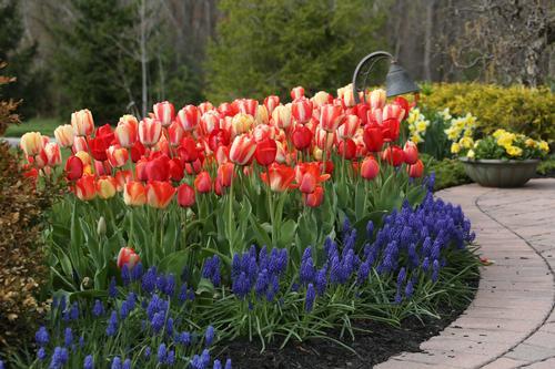 Nursery Garden Design Ideas