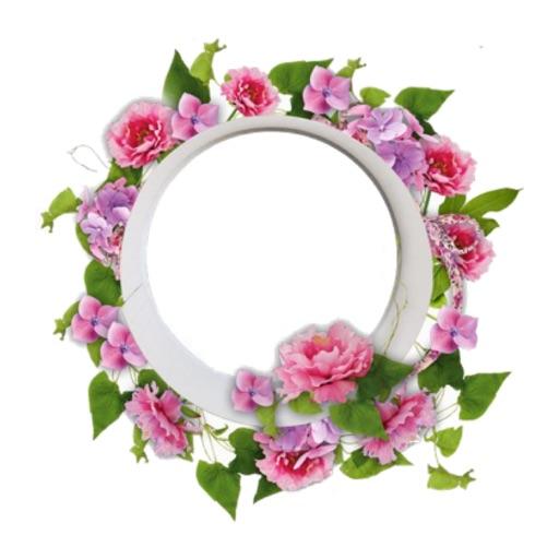 Floral Frame Hd