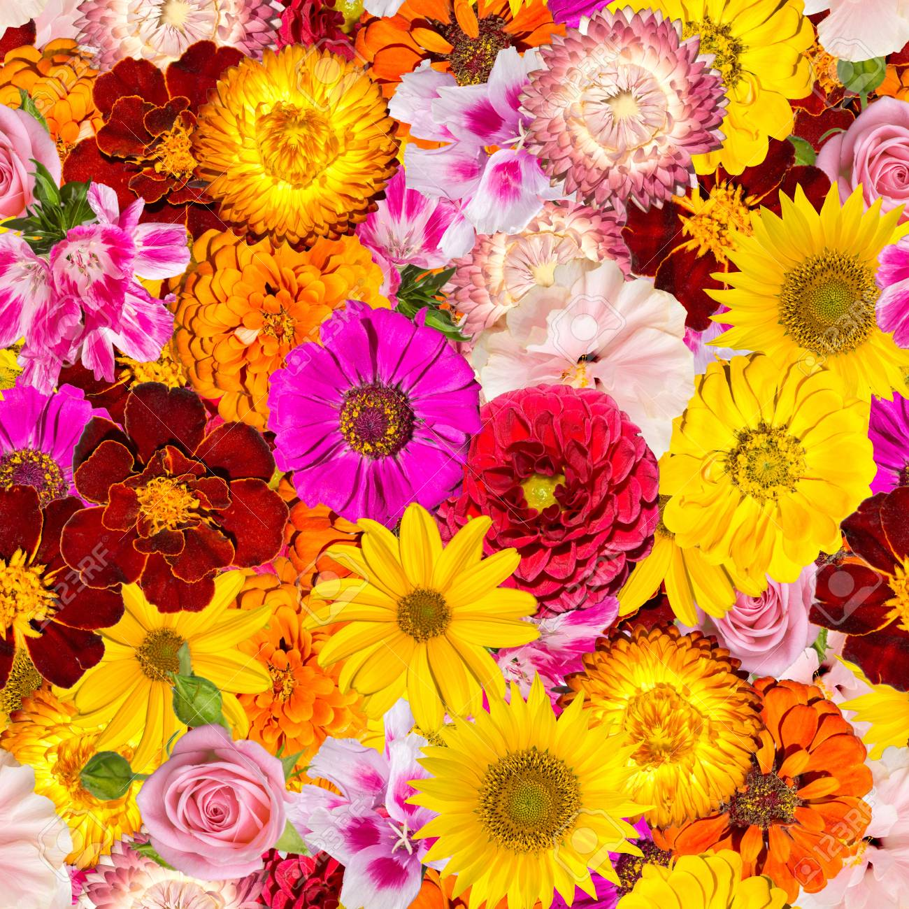 Pink-roses-and-sunflowers