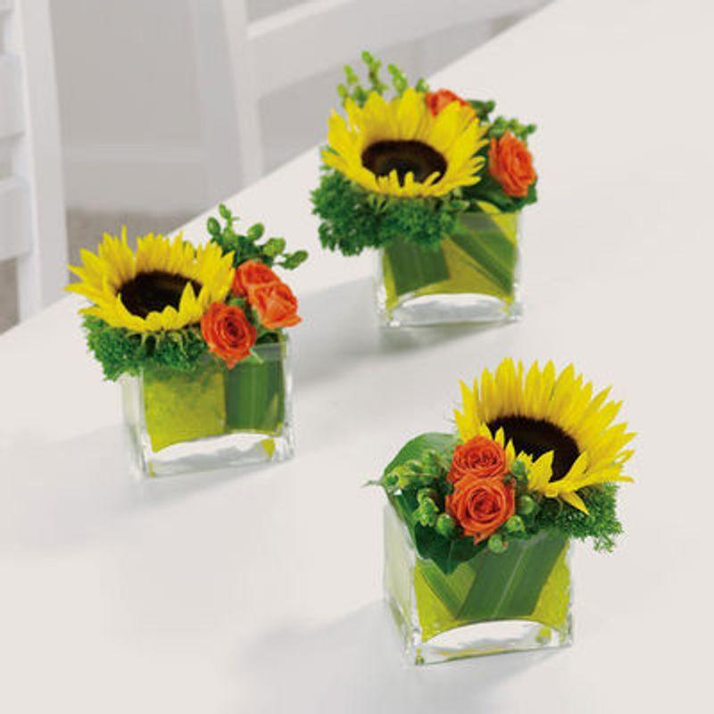 Sunflower Breakaway Chicago Florists (designsbyrose.com)