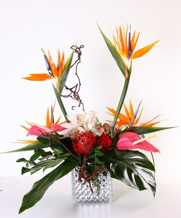 Tropical Breeze - Principles Of Design Proportion Flowers(kittelbergerflorist.com)