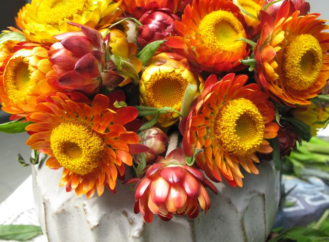 Everlasting-Flowers (Market-Manila)