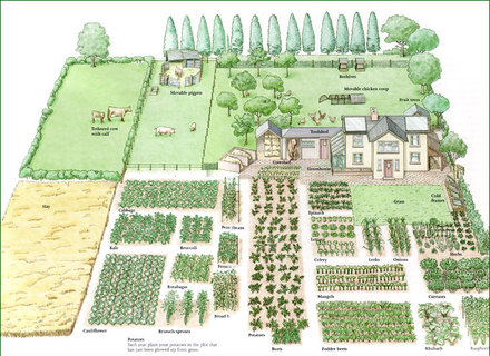 How to Planning A Garden Layout (The Review Atnyu)